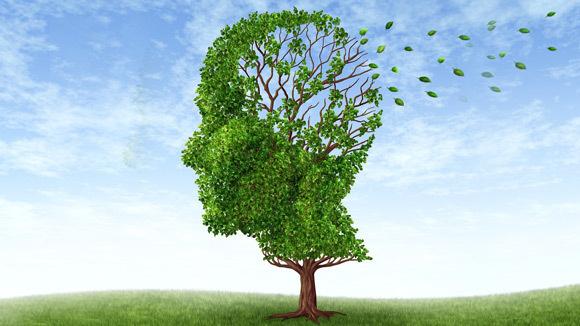 5 Canciones Sobre El Alzheimer Velvety